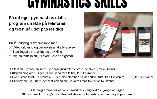 skillsprogram